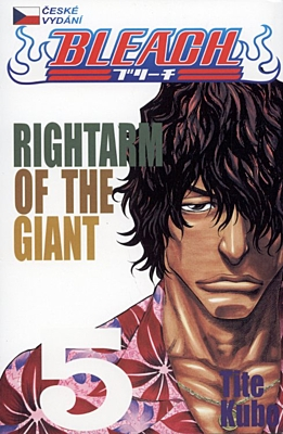 Bleach 05: Rightarm of the Giant