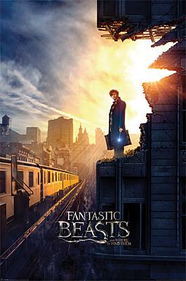 Fantastic Beasts - plakát Dusk 61x91cm