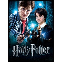 Harry Potter - Poster Puzzle - Harry Potter